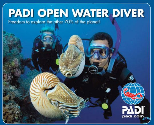 PADI Open Water Referral Certification - Mexico Divers Reservations