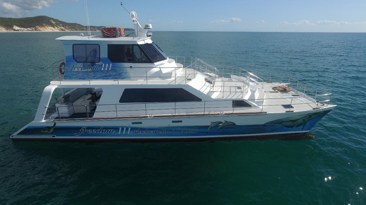 Premium Whale Watch tour