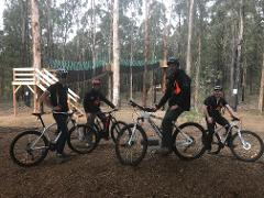 Forest Riding Party