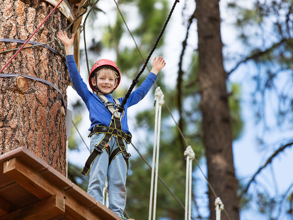 Treetop Adventures - Climbing Centre Only