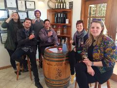 Wine Tasting Tour Without Lunch