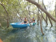 Gift Voucher - Go Sea Kayak River Tours (Adult)