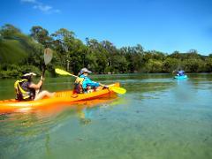 Double Kayak Rental in Brunswick River