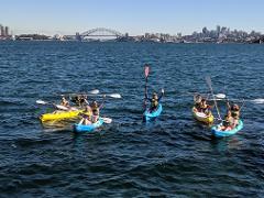 Sunrise Sydney Harbour Sea Kayak Tour