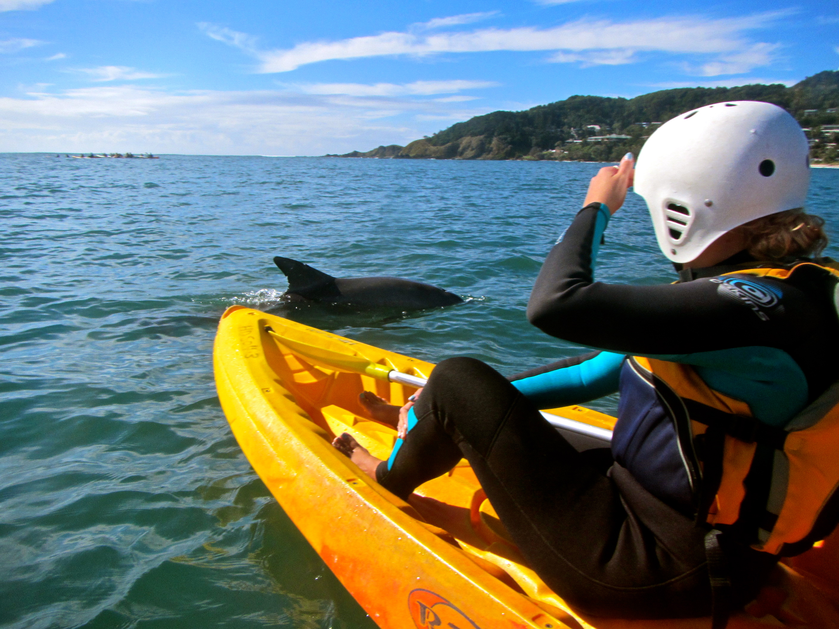 Image result for kayak dolphin byron