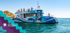 Algarve Boat Festival