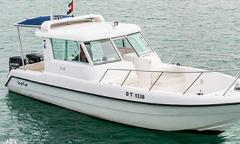 31ft Gulf Craft