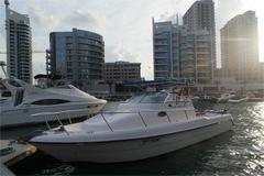 31ft Cruiser