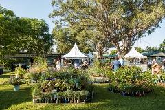 Collectors' Plant Fair Day Tour