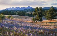 Flinders Ranges & The Clare Valley Autumn Festival