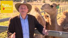 Better Homes and Gardens - Camel Farm Experience