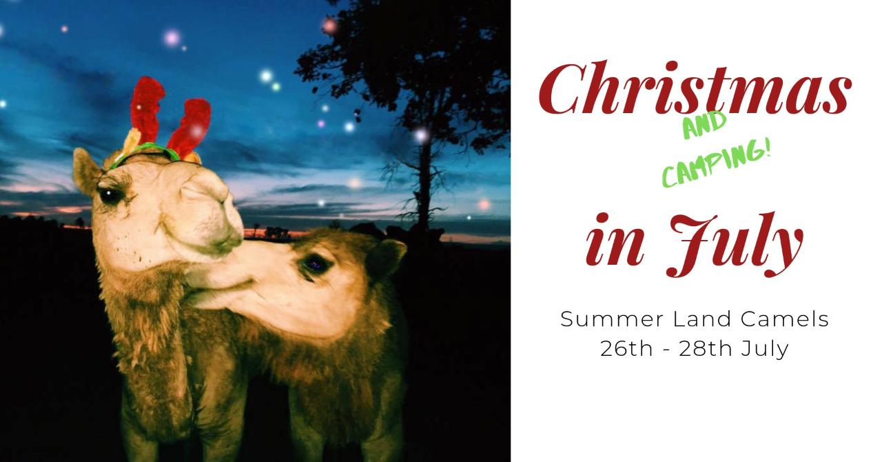 Christmas In July Camping.Christmas Camping In July Summer Land Camels Reservations