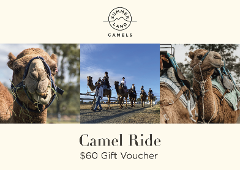 Gift Card - Camel Ride
