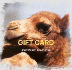 Gift Card - Camel Farm Experience Tour & Taste