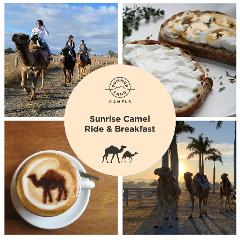 Sunrise Camel Ride & Breakfast