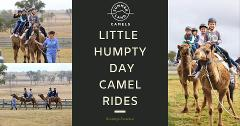 Little Humpty Camel Rides (Christmas Party Ticket Required)