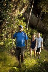 1 Day Rainbow Serpent Rock Art Tour with return flights
