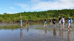 2 Day Daintree Dreaming- Cape Tribulation