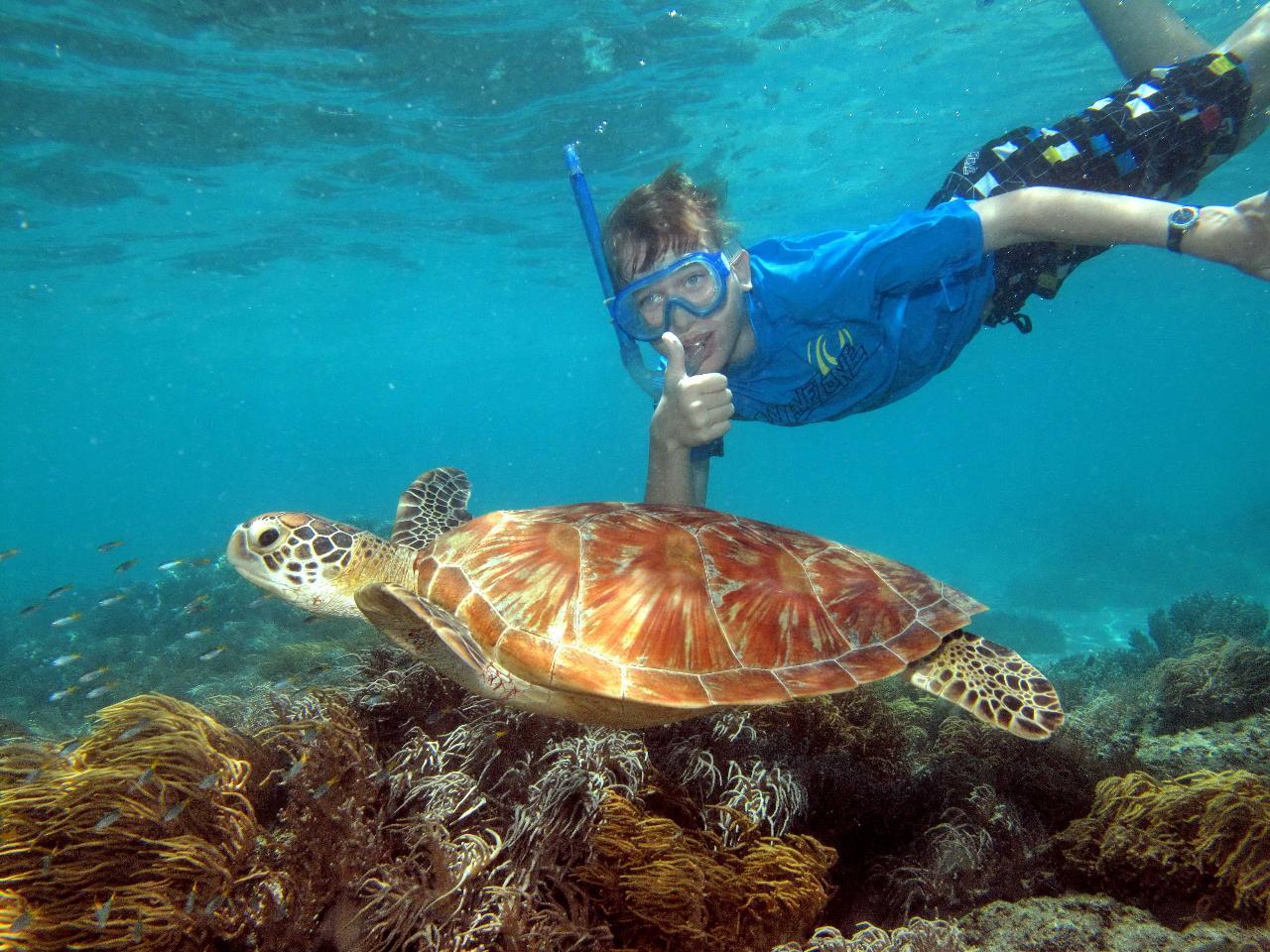 2 Day Reef, Daintree Rainforest & Culture tour – featuring Ocean Spirit