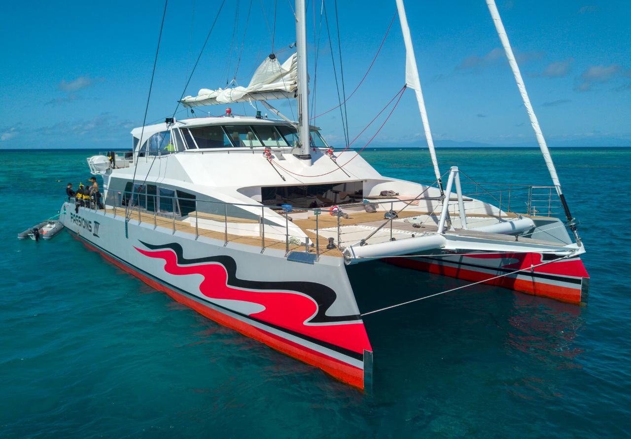 2 Day Reef, Daintree Rainforest & Aboriginal Culture tour – Passions of Paradise