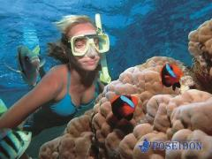2 Day Reef, Daintree Rainforest & Culture tour –  Poseidon Cruises ex Port Douglas