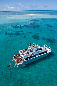 2 Day Reef, Daintree Rainforest & Culture tour – featuring Ocean Freedom