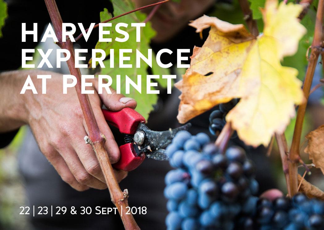 Harvest Experience