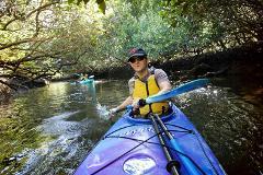 1 Person Kayak Hire