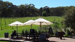 Adelaide Hills Small group tour