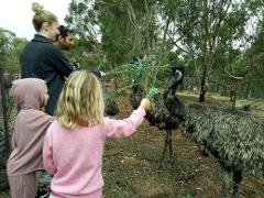 The Toodyay Back To Nature Tour