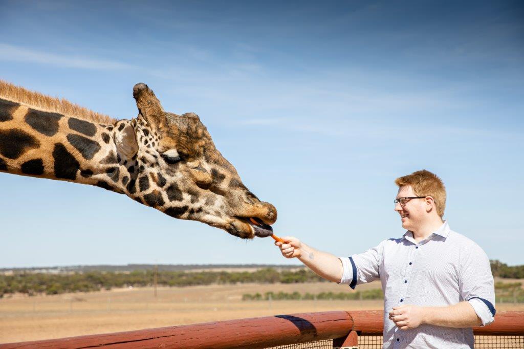 Giraffe Safari and a day at Monarto Safari Park