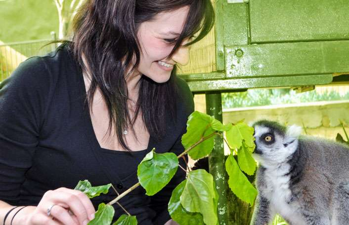 A day at Adelaide Zoo and a Lemur Encounter