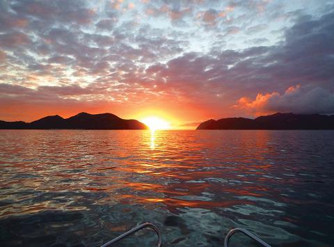 Freycinet Charters—Charter the Whole Boat Tasmania Australia