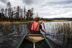 Go Paddle - Half Day Canoe