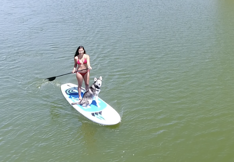2 Hour Paddleboard Rental