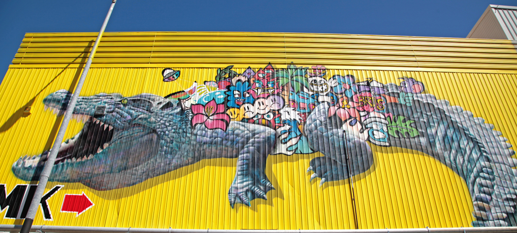 Darwin's Street Art Walk - 1.5 Hour Tour