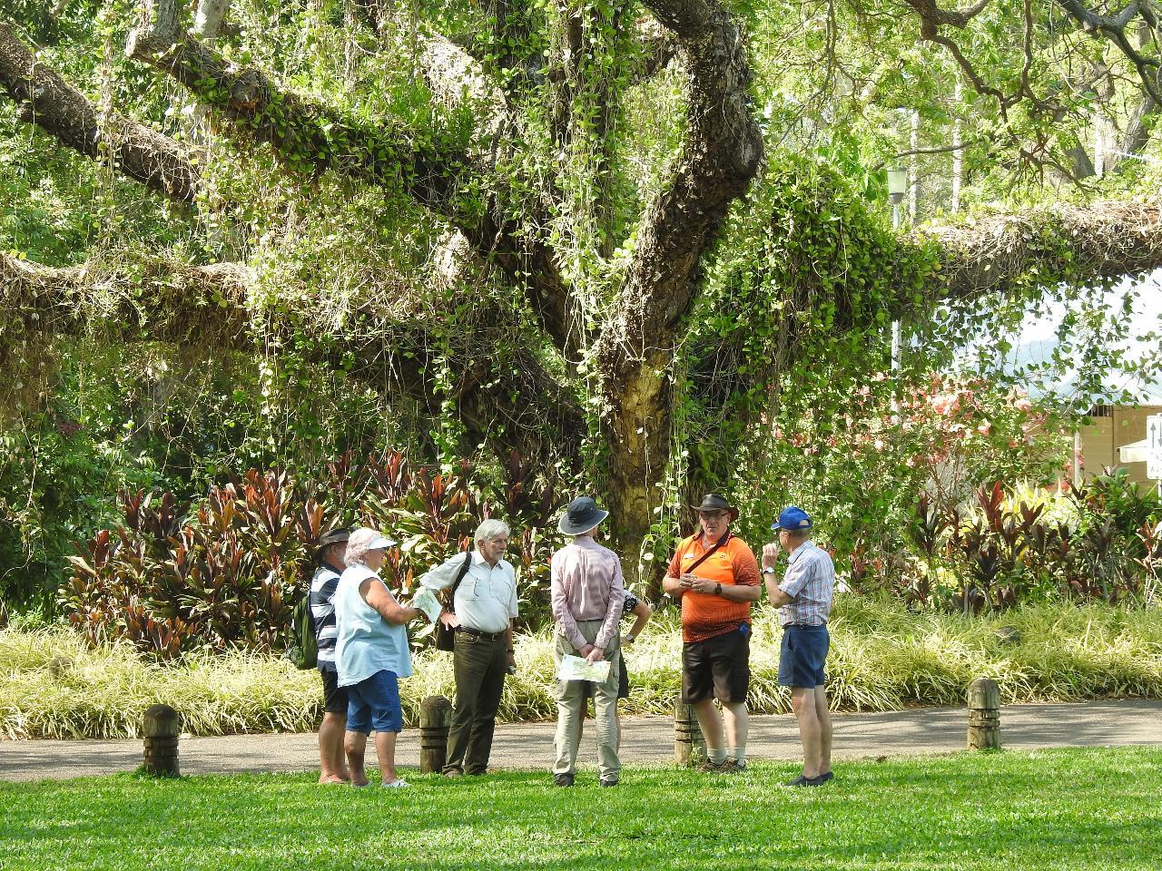 Botanic Gardens Open Day Walks