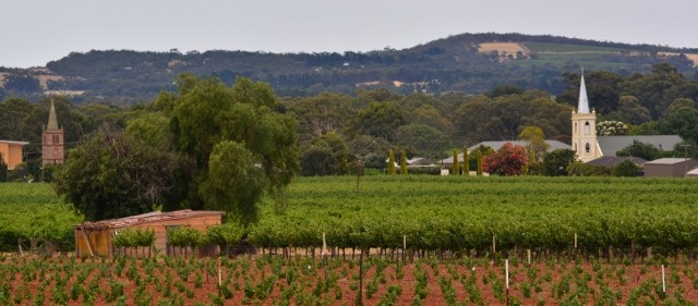 Barossa Day Tour