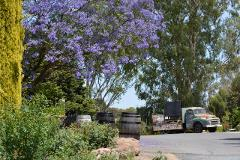 Barossa Breakfast Day Tour