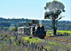 South Coast Wine Train - Departing from Adelaide City and City Hotels