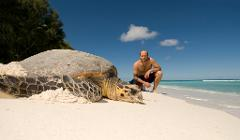 Costa Rica – The Sea Turtle Initiative