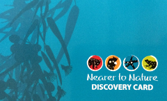 Nearer to Nature Discovery Club Membership