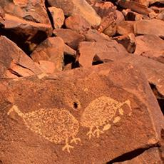 Rock Art Tour