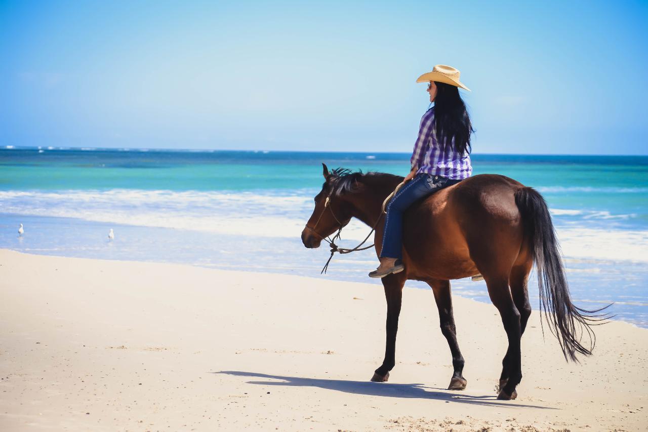 60 Minute Beach Ride Silver Sands