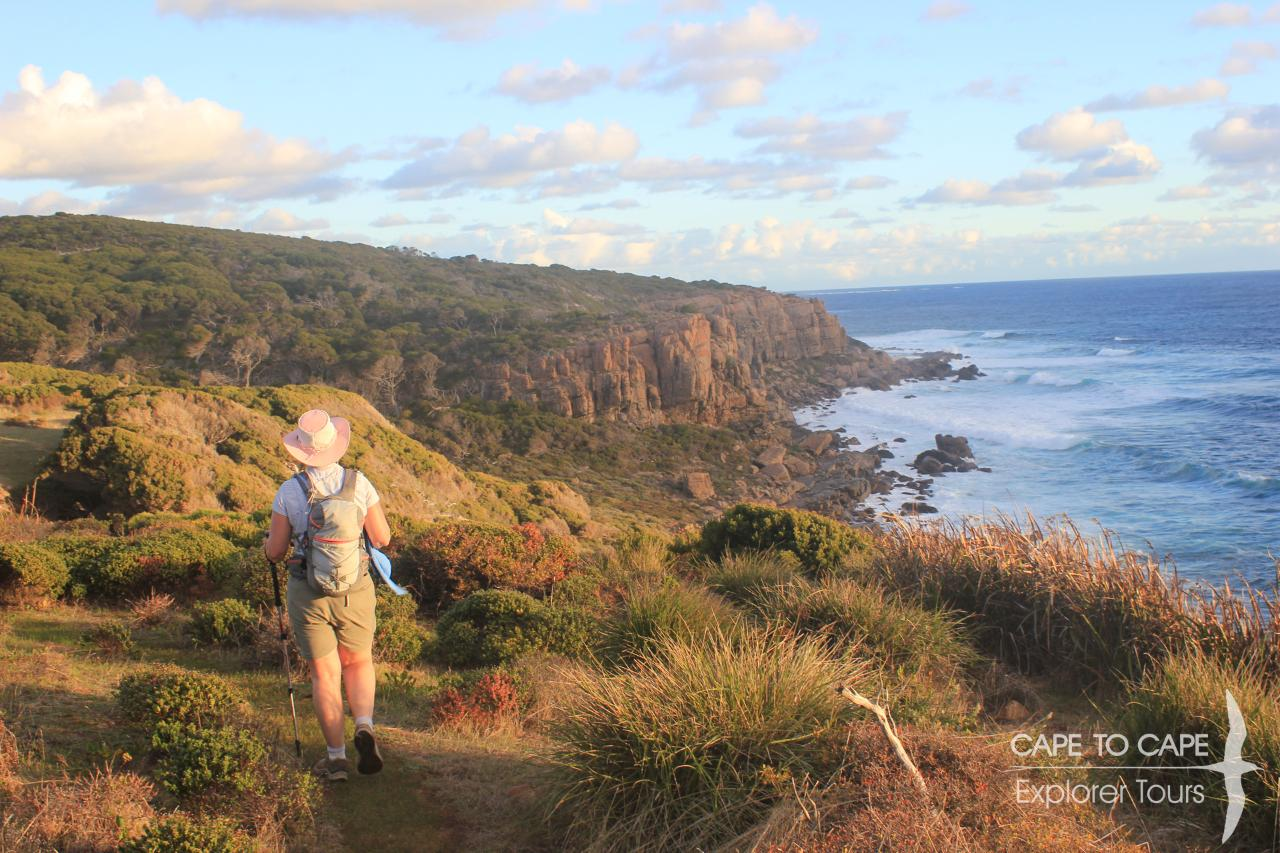 Exclusive 4 Day Ultimate Guided Cape to Cape Experience (Exclusive Smiths Beach)