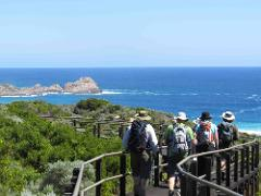 Full Day Guided Hike on the Cape to Cape Track