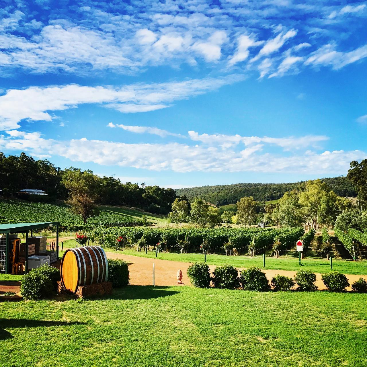 Bickley Valley Wine Tour - Full Day Tour
