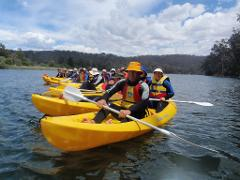 Bega River Kayak Tour
