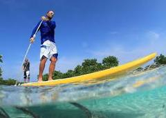 Stand Up Paddle Hire Fishpen