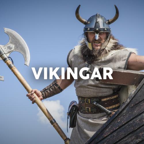 Stadsvandring - Vikingar i Uppsala